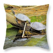 Turtles At The National Zoo Throw Pillow