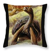 Turtles Detail Throw Pillow