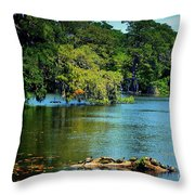 Turtles On A Log Arlie Lake Throw Pillow