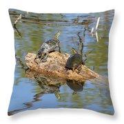 Turtles On Stump Throw Pillow