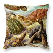 Turtles Turtles And More Turtles Throw Pillow