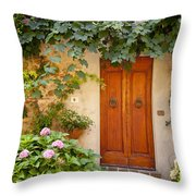 Tuscan Door Throw Pillow