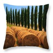 Tuscan Hay Throw Pillow
