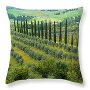 Tuscan Panoramic 3 Throw Pillow