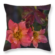 Tuscan Sun Rose Throw Pillow