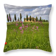 Tuscany - Pienza Throw Pillow