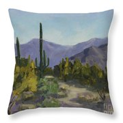 The Serene Desert Throw Pillow