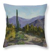 The Serene Desert Throw Pillow