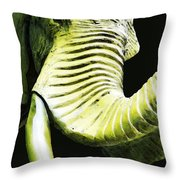 Tusk 1 - Dramatic Elephant Head Shot Art Throw Pillow by Sharon Cummings