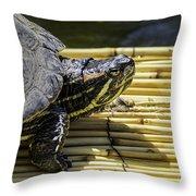 Tutle On Raft Throw Pillow
