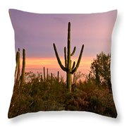 Twilight After Sunset In The Cactus Forests Of Saguaro National Park Throw Pillow
