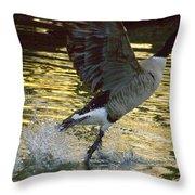Twilight Goose I Throw Pillow
