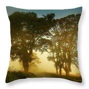 Twilight Guardians. Misty Roads Of Scotland Throw Pillow by Jenny Rainbow