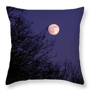 Twilight Moon Throw Pillow by Rona Black