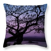 Twilight On Hilo Bay Hawaii Throw Pillow