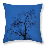 Twilight  Tracery  Throw Pillow