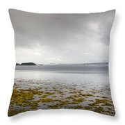 Twillingate Bay Throw Pillow