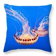 Twin Dancers - Large Colorful Jellyfish Atlantic Sea Nettle Chrysaora Quinquecirrha  Throw Pillow
