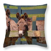 Twin Donkeys Throw Pillow