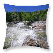 Twin Falls Austin Throw Pillow