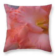 Twin Gladiola Blooms Throw Pillow