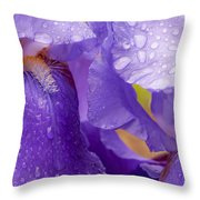 Twin Iris Throw Pillow