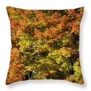 Twin Maples Throw Pillow