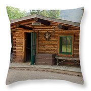 Twin No. 1 Cabin At The Holzwarth Historic Site Throw Pillow