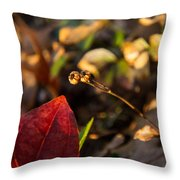 Twin Spotted Wintergreen Pods Throw Pillow