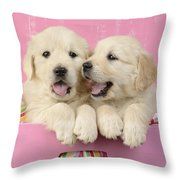Twin White Labs In Pink Basket Throw Pillow by Greg Cuddiford