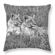 Twins V2 Throw Pillow