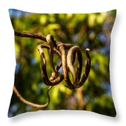 Twirling Vine Tendril Throw Pillow