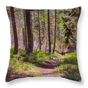 Twisp River Trail Throw Pillow
