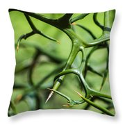 Twisted 2 Throw Pillow