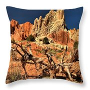 Twisted And Colorful Throw Pillow