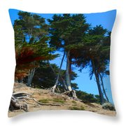 Twisted Cypress  Throw Pillow
