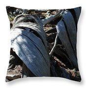 Twisted IIi Throw Pillow