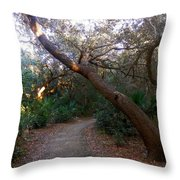 Twisted Oaks 2 Throw Pillow