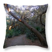 Twisted Oaks 1 Throw Pillow