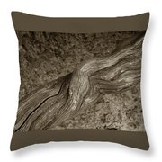 Twisted Root Throw Pillow