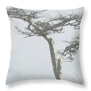 Twisted Tree 2 Throw Pillow