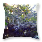 Twisted Tree Throw Pillow by Carey Chen
