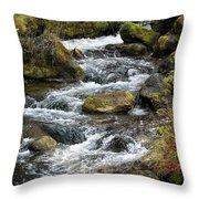 Twisted Waters Throw Pillow