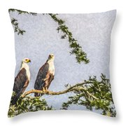 Two African Fish Eagles Haliaeetus Vocifer  Throw Pillow