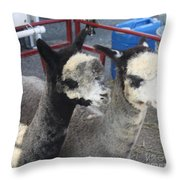 Two Alpacas Throw Pillow