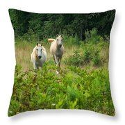 Two Appaloosa Horses  Throw Pillow