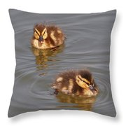 Two Baby Ducklings Throw Pillow