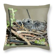 Two Baby Mourning Doves Throw Pillow