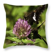 Two Beautiful Butterflies Throw Pillow