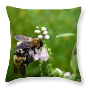 Two Bees On Flower Throw Pillow